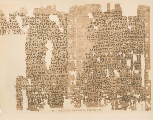 Kahun Gynaecological Papyrus
